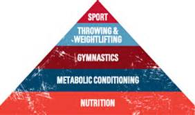 Hierarchy of fitness
